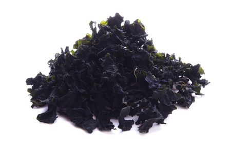 alga: hijiki. dry brown alga