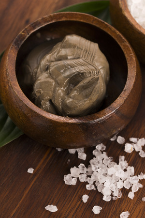 Dead Sea mud and salt in a bowl photo
