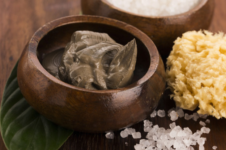 body mask: Dead Sea mud and salt in a bowl Stock Photo