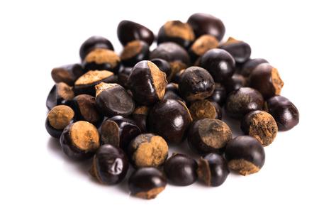 ガラナ種子