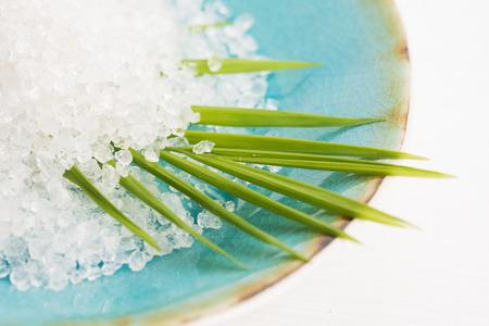 Kąpiel soli i Palma liści Zdjęcie Seryjne