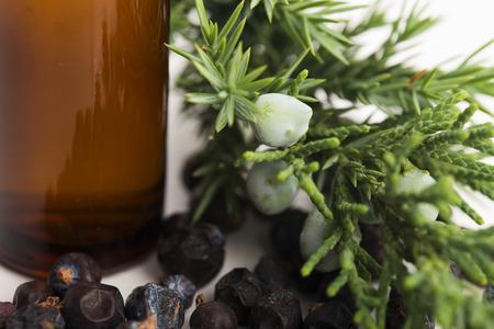 enebro: El aceite esencial de enebro