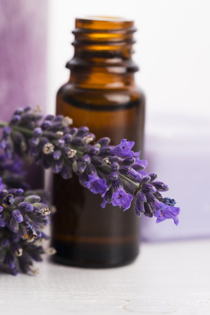 lavender: essential oil and lavender flowers