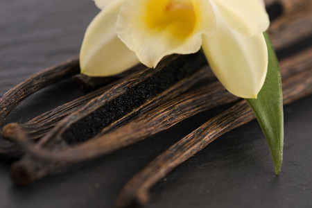 Vanilla pods Stock Photo