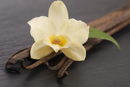 バニラのさや