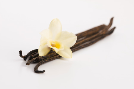 Vanilla pods Archivio Fotografico