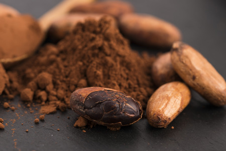 cacao: cacao beans and cacao powder in spoon