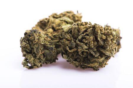 Cogollos de marihuana seca sobre fondo blanco. Foto de archivo
