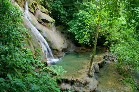 Palenque rainforest waterfall Stock Photo - 22958266