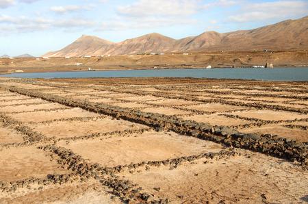 obtaining: Salinas del Janubio sea salt manufacture, Lanzarote, Canary Islands
