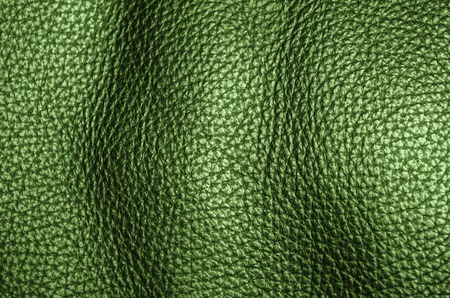 natural crocodile green leather furniture coverage texture background Stock Photo - 26542514