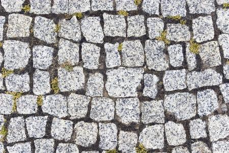 garden path paved with grey granite sett