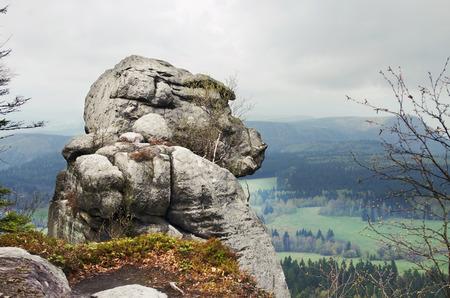 gory: la roccia uomo scimmia in Szczeliniec Wielki in Gory Stolowe Table Mountains, Polonia