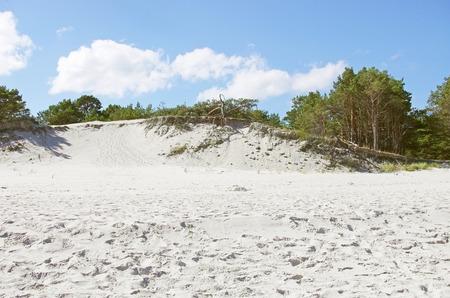 white sand beach with wild dunes, Hel, Poland Stock Photo - 31761922