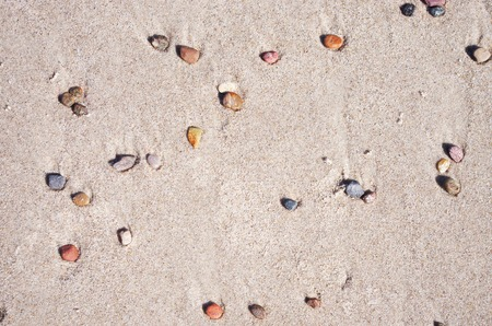 little stone pebbles in the sand on the beach Stock Photo - 31761925