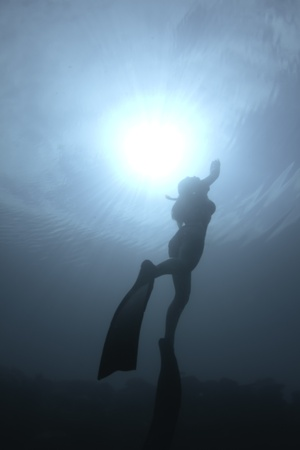 Bikini freediver Stock Photo