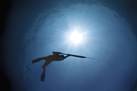 Spearfisher from below in the clear waters of Australias Great barrier reef. photo