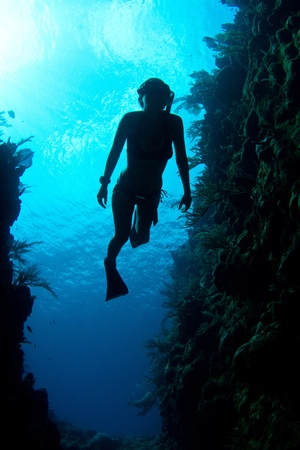 A freediver enjoys the crystal clear Caribbean waters.
