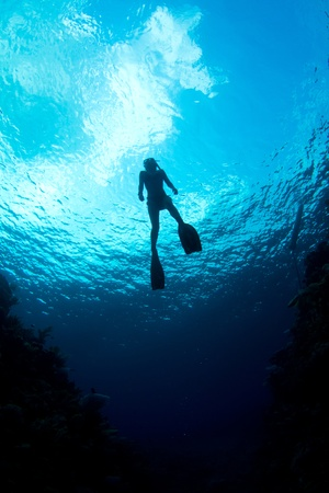 A freediver ascends through the crystal clear waters of The Caribbean. Stock Photo
