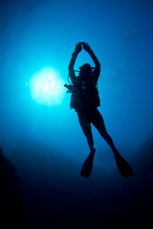A Scuba diver enjoys the crystal clear waters off The Caribbean coast. Stock Photo - 9255203