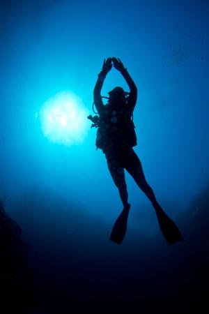 nurkować: Scuba diver cieszy krysztaÅ'owo wód przybrzeżnych Karaibów.
