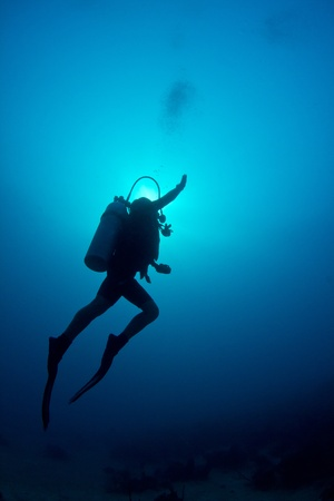 ascends: A scuba diver ascends through the crystal clear waters of The Caribbean.
