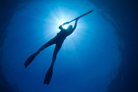 A young woman spearfishing on The Great Barrier Reef photo