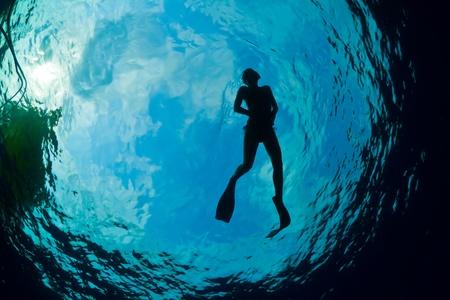 picada: Una joven mujer de buceo en el Caribe