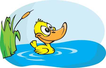 A Cute little yellow duckling paddles around in his pond. Cartoon vector illustration.