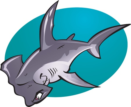 hammerhead shark: A cartoon illustration of the fearsome looking Deep water Hammer Head Shark. Part of a series of Various shark species. Illustration