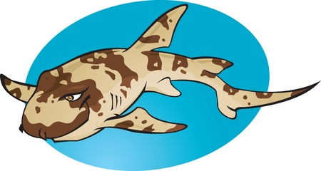 A cartoon illustration of the small cute and harmless Bamboo Shark. Part of a series of Various shark species. Vector
