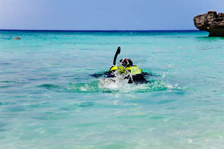 Man snorkels out from Smith Cove, Grand Cayman photo