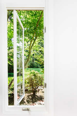 Window open to sunny, summer garden; focus on trees and outdoors photo