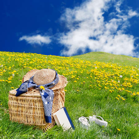 fiori di campo: Cappello di paglia, cestino da picnic, libro e infradito seduta sul prato in un rotolamento, dente di leone riempito prato Archivio Fotografico