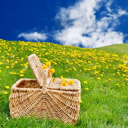 fleurs des champs: Panier pique-nique assis sur l'herbe dans un roulement, de pissenlit remplis prairie Banque d'images