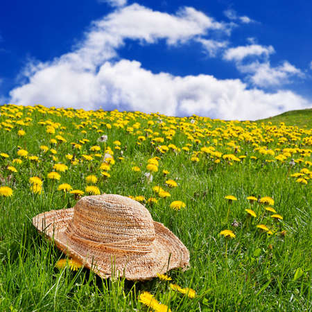 Straw hat sitting on the grass in a rolling, dandelion filled meadow photo
