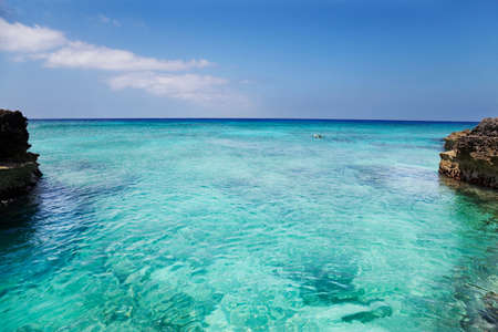 cayman islands: Man explores the reef off Smith Cove, Grand Cayman. Slight curve to the horizon