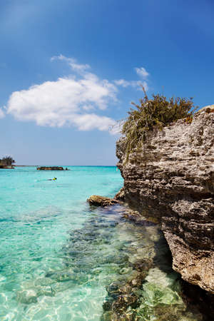 Man snorkels away from the beach at Smith Cove, Grand Cayman photo