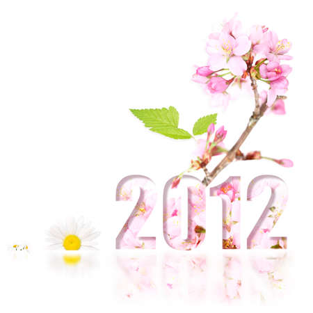 A bloomin good New Year in 2012 photo