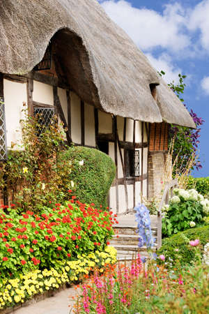 cottages: Colorful flowers on a bright summer day Stock Photo