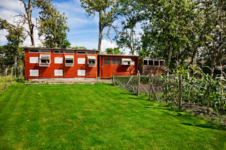 homing: Vegetable garden, homing pigeon coop in a rural English back garden Stock Photo