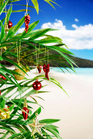 Palm tree with ornaments for a tropical Christmas photo