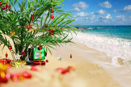 Decorated palm and presents on the beach photo