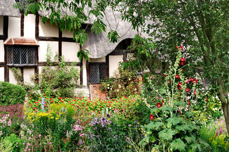 old english: Charming chaos of an English cottage garden in summer