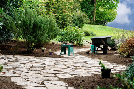 transplanting: Transplanting new shrubs from nursery pots