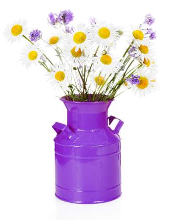 vase: Vase of oxeye daisies & lavender Stock Photo