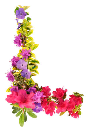 purples: Border of spring leaves and flowers in purples, pinks and yellows