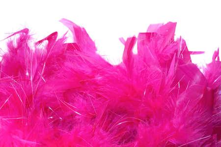 feather boa: Vivid feather boa