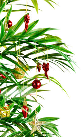 tropical christmas: Palm tree with ornaments for a tropical Christmas Stock Photo