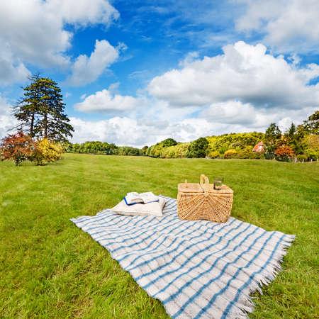 picnic blanket: Manta de picnic, colch�n, almohada, cesta y en un campo de laminaci�n
